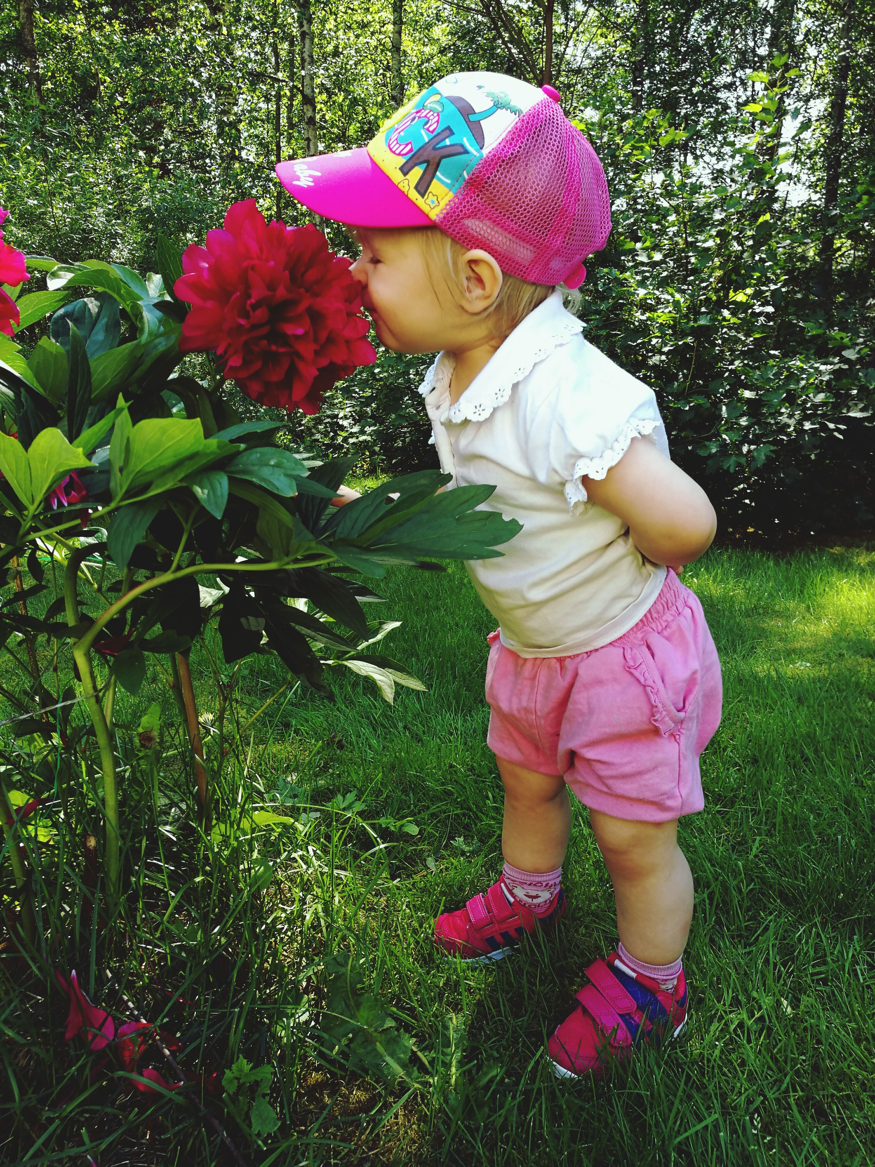 childhood, elementary age, girls, innocence, cute, casual clothing, person, flower, park - man made space, boys, leisure activity, lifestyles, full length, growth, grass, fragility, plant, green color