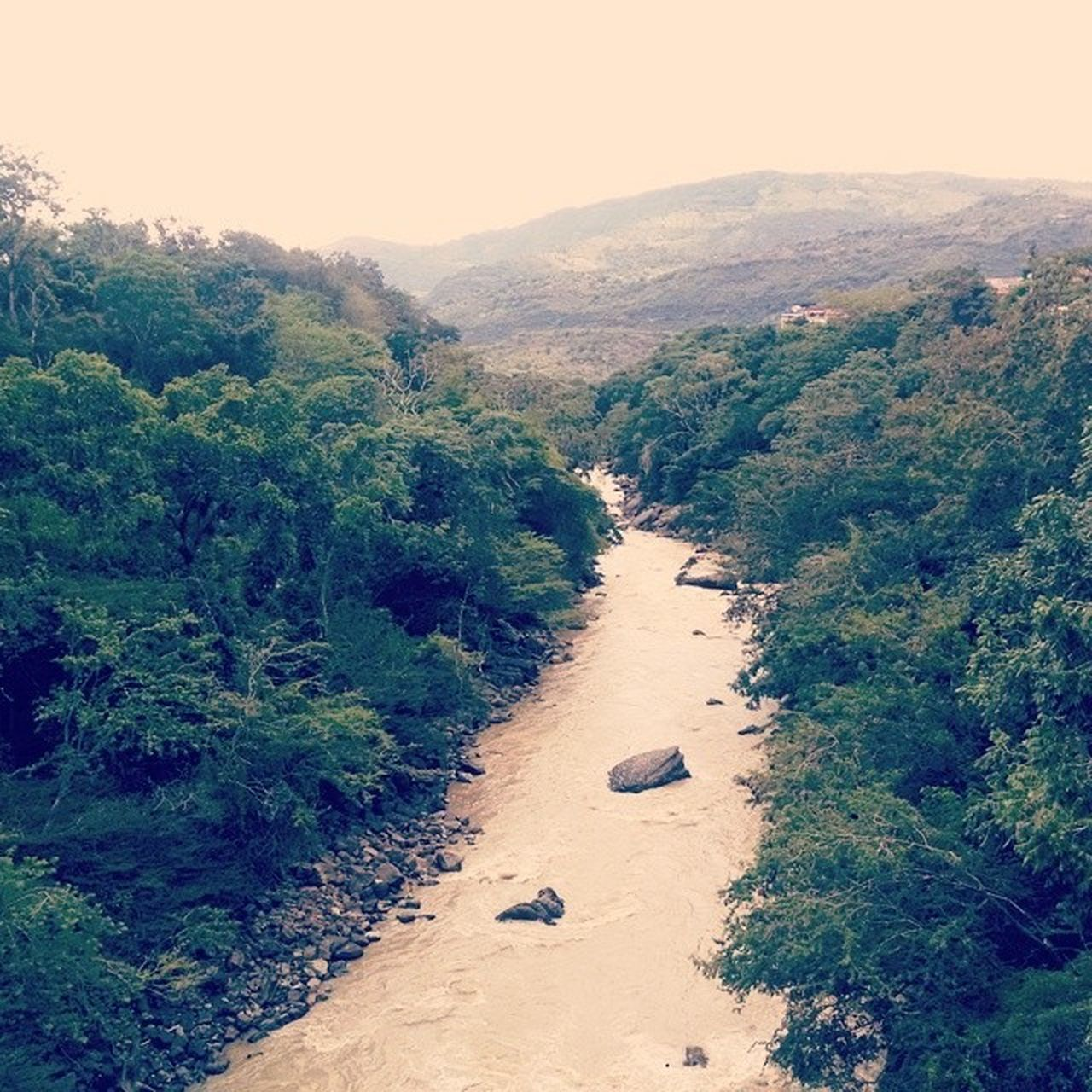 Río Chicamocha River View River Collection Water Rio Rivers Forest Forest River Jungle Jungle River Jungle River South America
