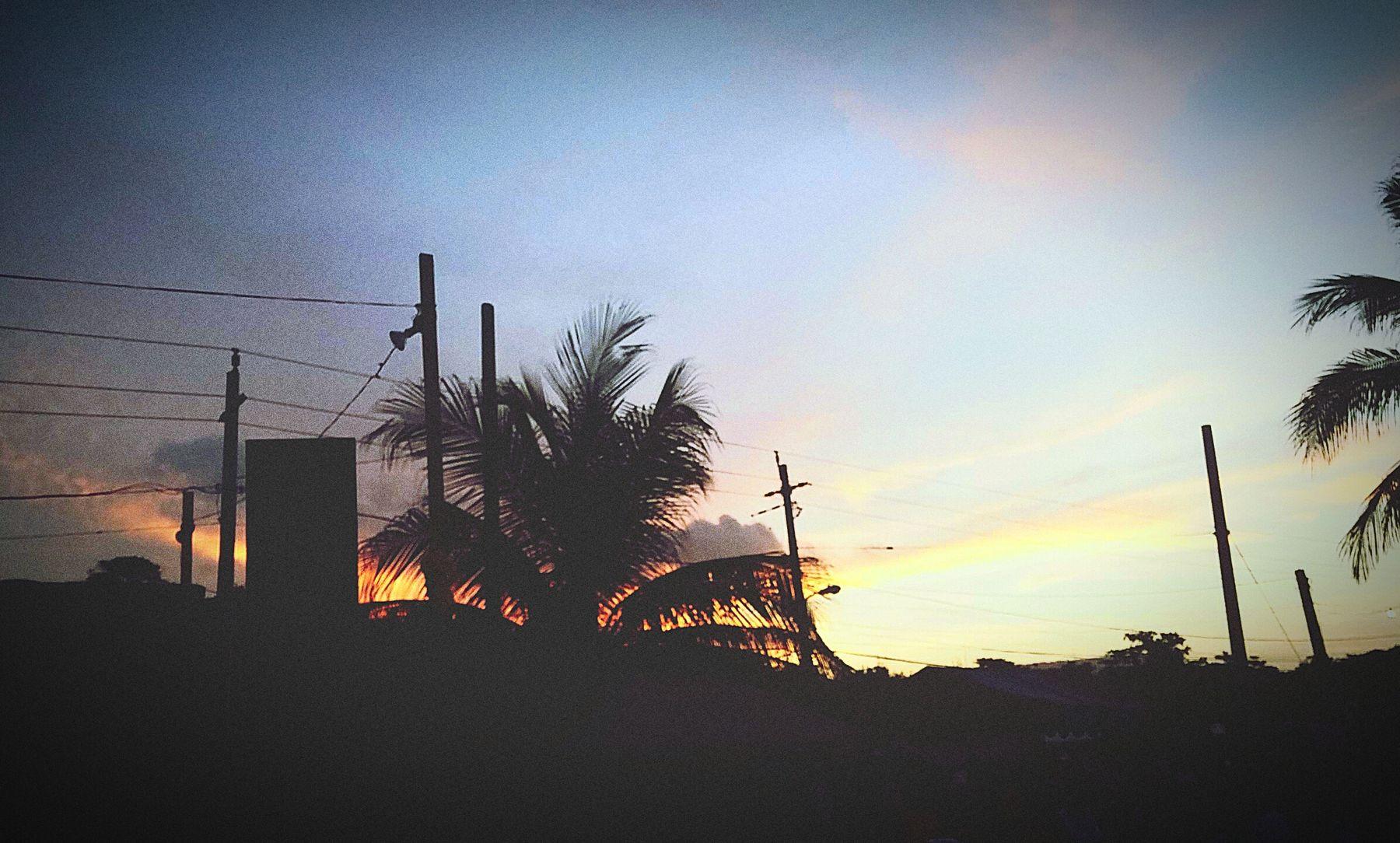 Long Bay Gala 2015. Enjoying the Cool Summer Evening. Sunshine Enjoying The Sun Enjoying The Sun
