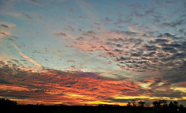 Sunset - 11/25/12 Sunset Taking Photos Fotodroiding Andrography Clouds And Sky Cloudporn Droidography Fotodroids Android Skyporn Andrographer Skymagic Droidographer Clouds