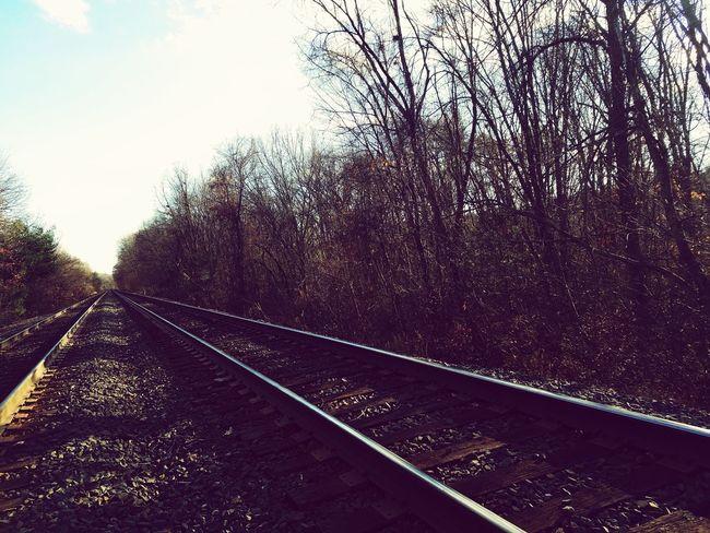 Railroad Track Rail Transportation Transportation No People Sky Day Outdoors Tree Nature Massachusetts Springfield Winter Dead Cold