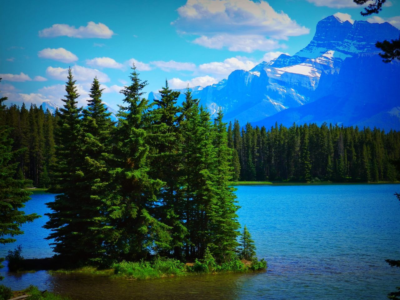 Alberta, Canada Beauty In Nature Canada Cloud - Sky Day Forest Growth Lake Mountain Nature No People Outdoors Scenics Sky Tranquil Scene Tranquility Tree Water Waterfront