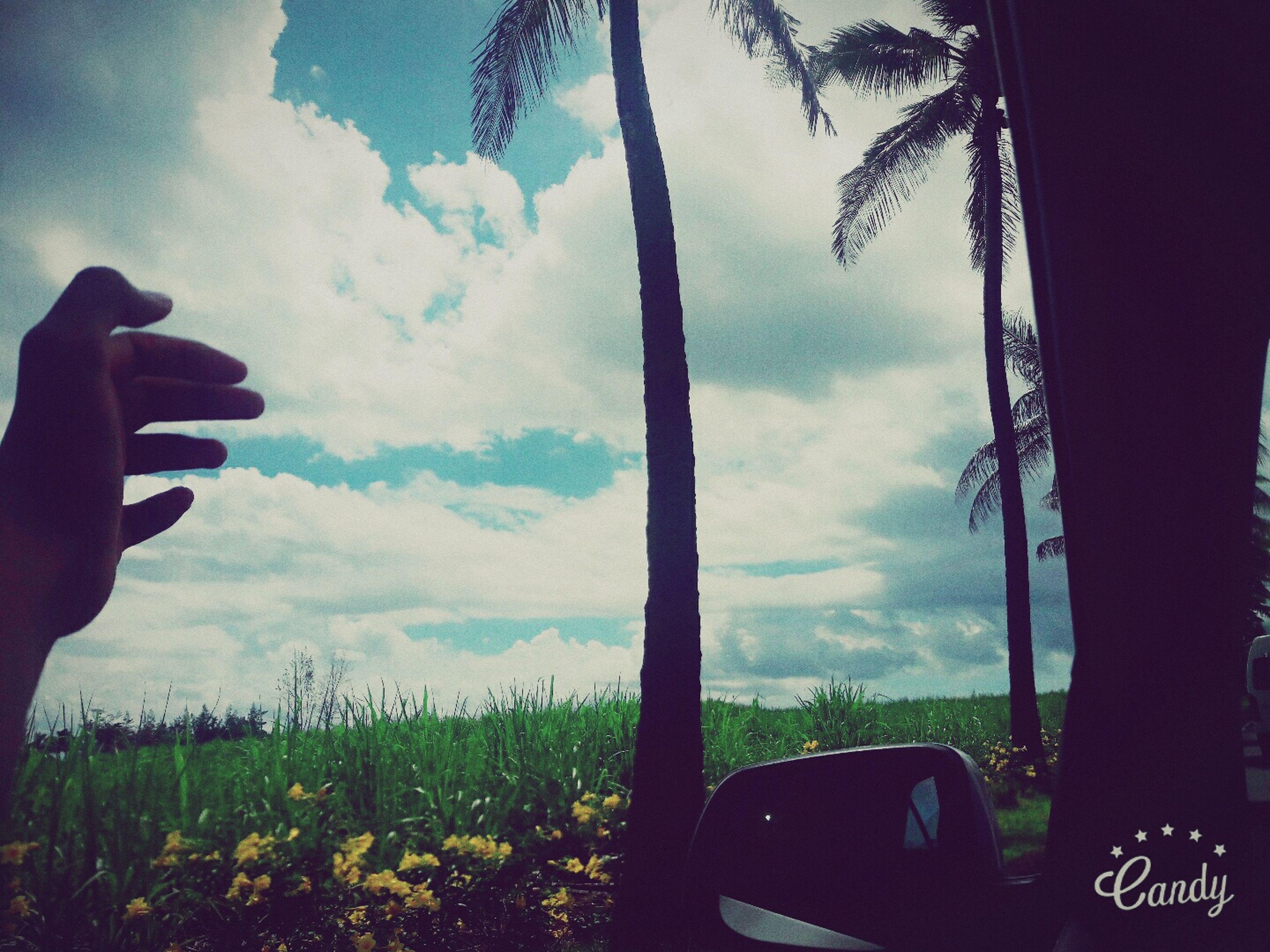 First Eyeem Photo Beautiful Mauritius