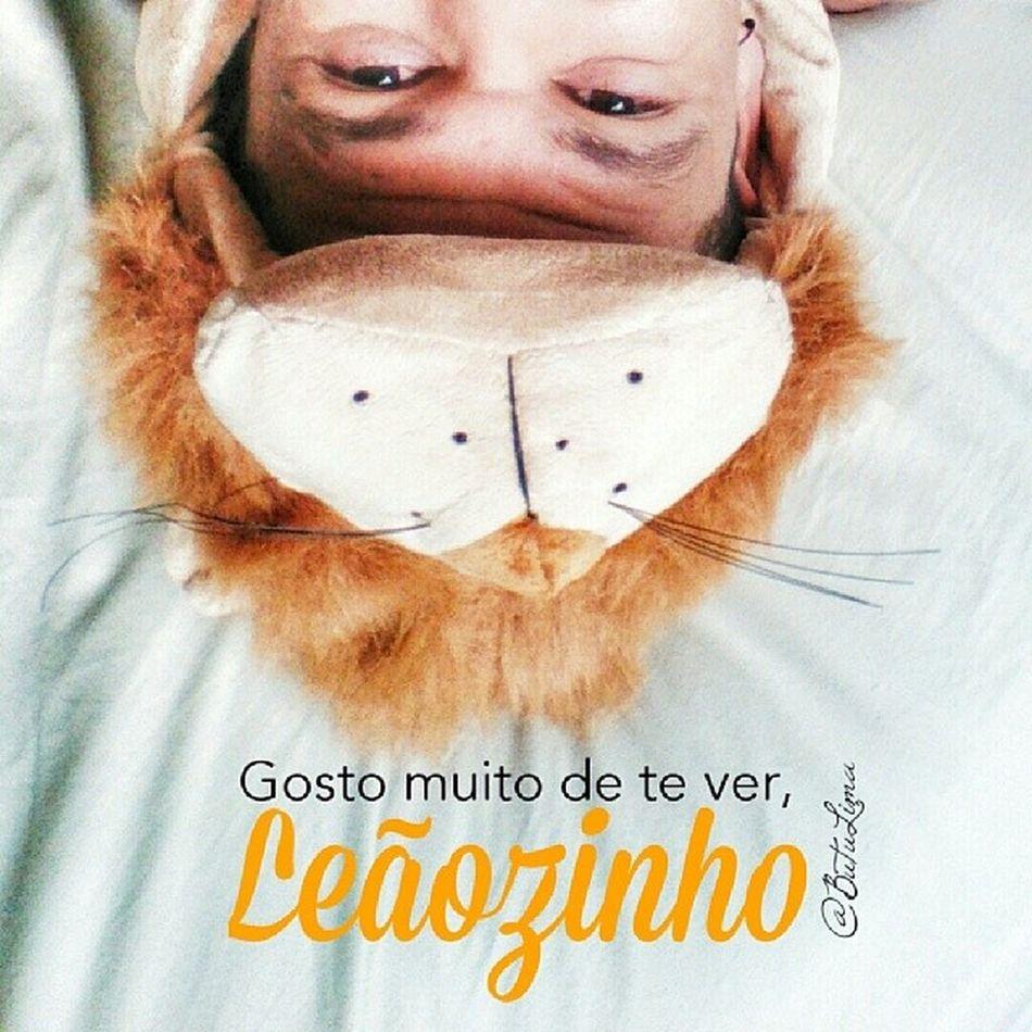 O Leãozinho CaetanoVeloso 😸