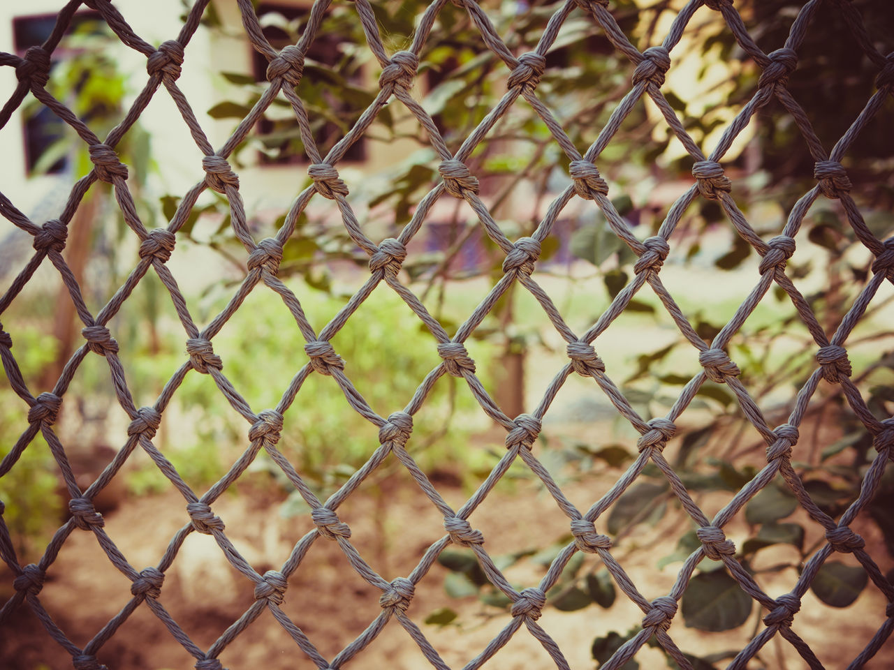 Protection Focus On Foreground Grating Net Trammel Sqare Multi Sqare Rope Net Rope Sqare Focus On Foreground