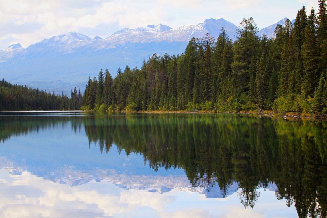 Reflection Water Mountain Nature Lake Forest Beauty In Nature Tree Mountain Range Scenics Tranquility No People Tranquil Scene Outdoors Landscape Non-urban Scene Sky Day EyeEm Best Shots Miles Away Trees Rocky Mountains Canadian Rockies  in Jasper National Park , Canada MISSIONS: The Great Outdoors - 2017 EyeEm Awards