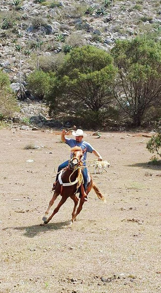 Ranch Life Horses SanLuispotosi Mexico Riding Mirancho❤️ Cousin