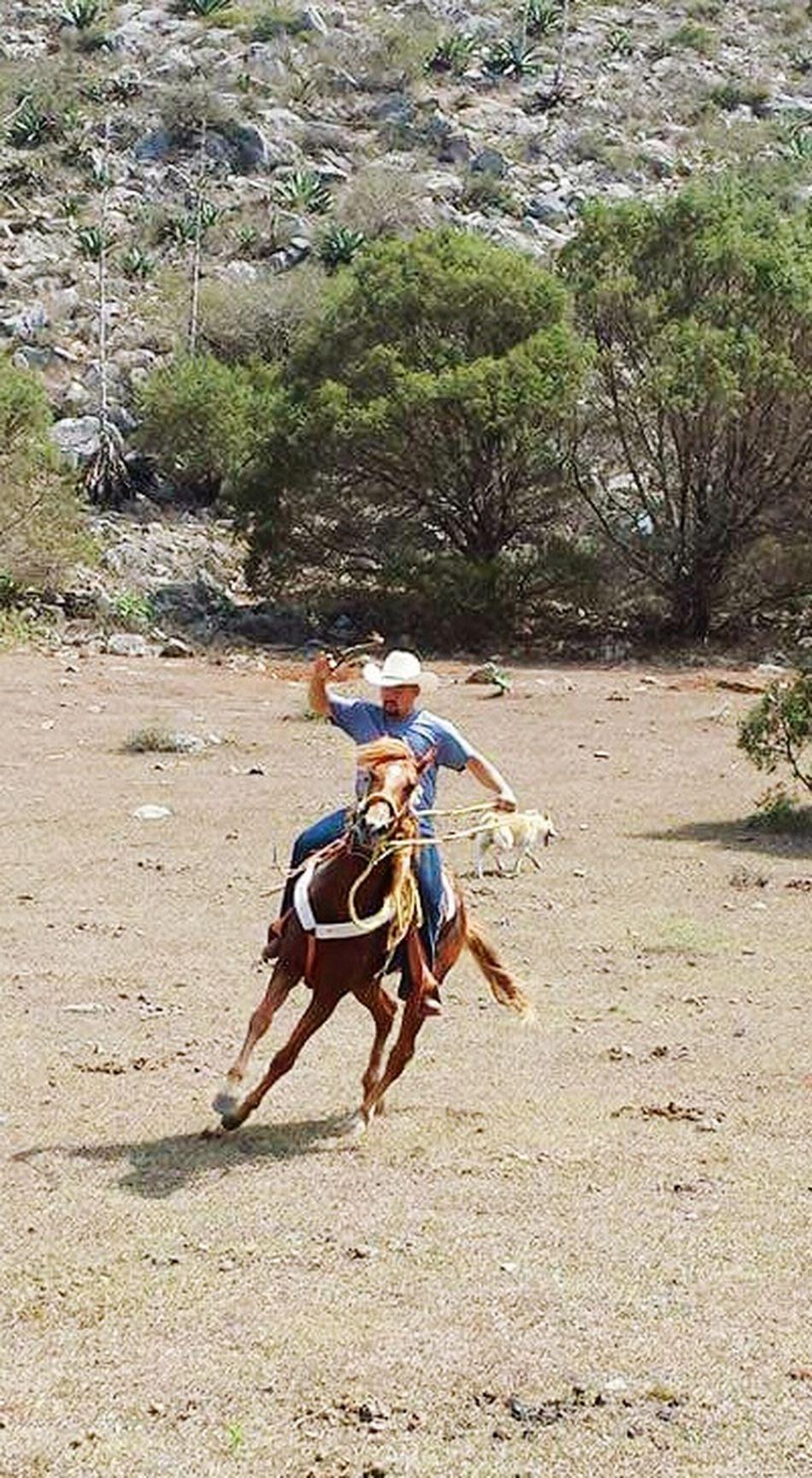 Ranch Life Horses SanLuispotosi Mexico Riding Mirancho❤️ Cousin