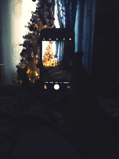 Christmas Tree Christmas Lights Christmas Balls White Red Gold IPhone Camera Prospective