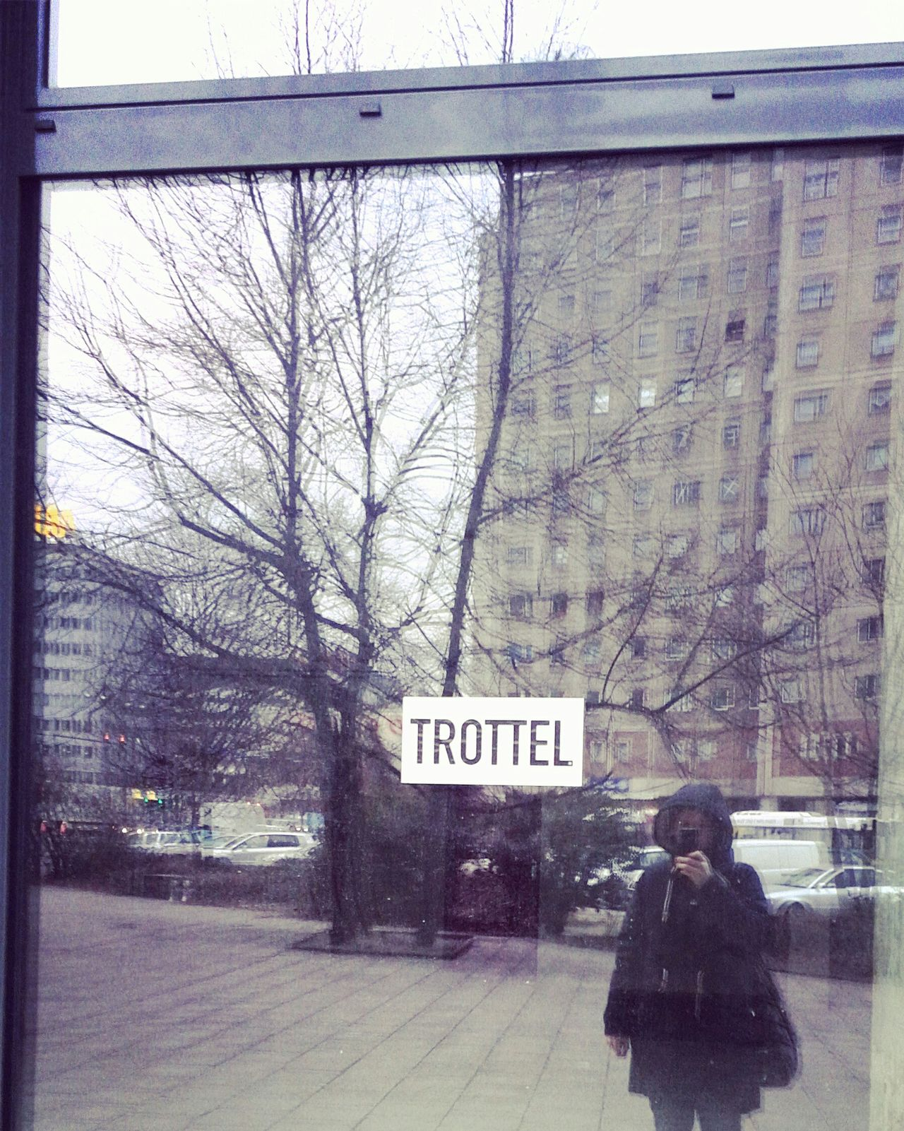 Trottel Fool  Idiot Hugging A Tree Signs Reflection Urban Nature Plattenbau Streetphotography Streetart Wohnglück Berliner Ansichten Urban That's Me Enjoying Life Hello World People Watching Cheese! Love Is In The Air Myfuckingberlin Buildings & Sky Haltstoppichmusserstmalnfotodavonmachen Reflections Window Window Shopping