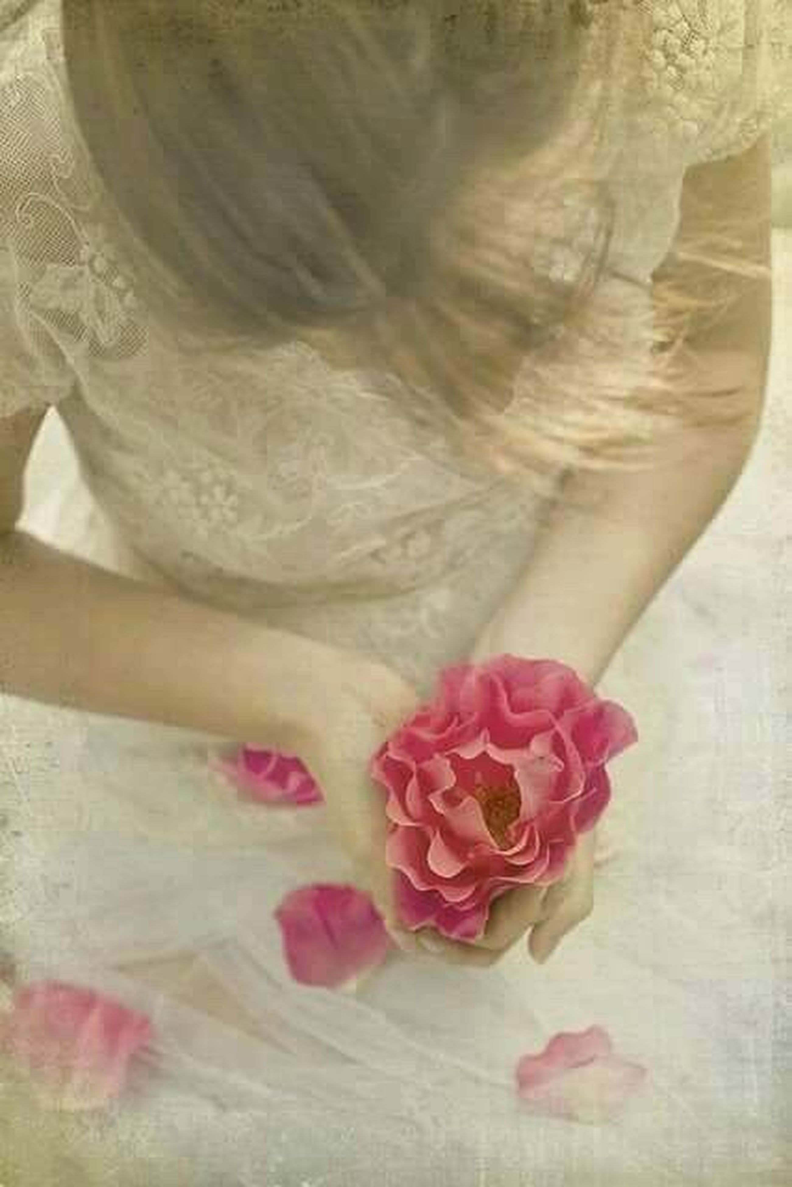 flower, rose - flower, pink color, bride, wedding, bouquet, wedding dress, beauty, close-up, nature, freshness, women, indoors, flower head, adult, fragility, people, beauty in nature, adults only, day