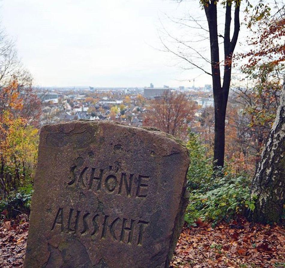 Вид оттуда и вправду красивый Schoeneaussicht Grafenberg Grafenbergwald Düsseldorf Nordrheinwestfallen NRW Germany Deutschland Europe
