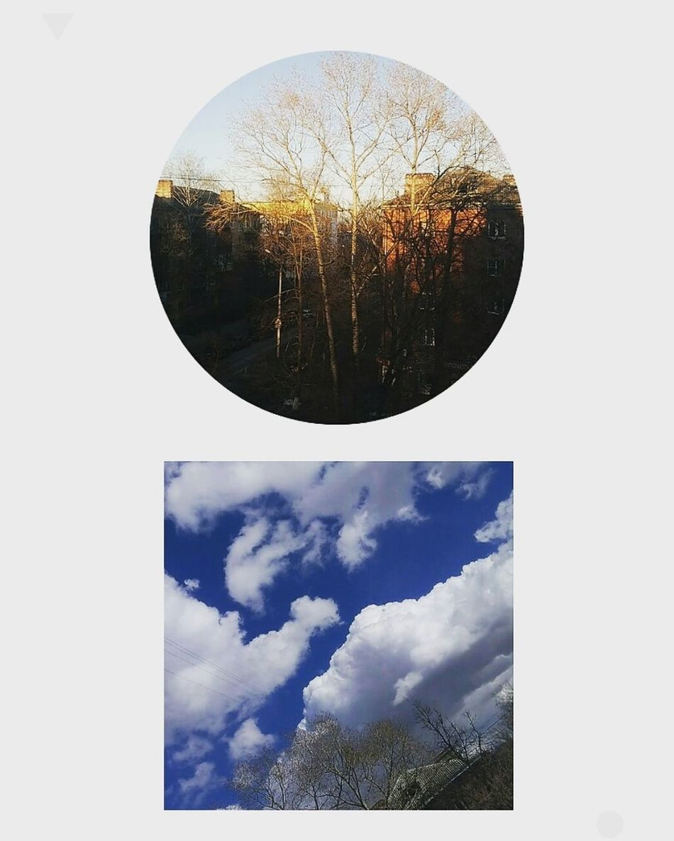 Circle Sky Abstract Cloud - Sky Surreal Water No People Outdoors Day Tree Multiple Image Close-up Pixelated