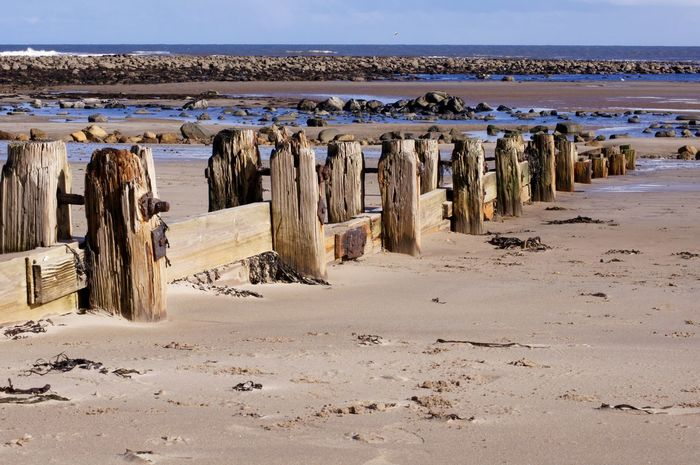 beach groyne leading to sea Animal Themes Architecture Arid Climate Beach Beauty In Nature Day Groyne Landscape Nature No People Outdoors Salt - Mineral Sand Scenics Sea Sky Water
