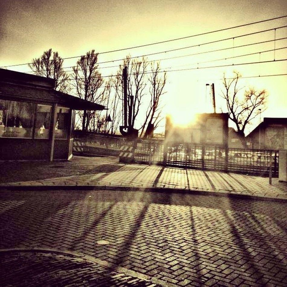5shotchallenge 5pics Shadow