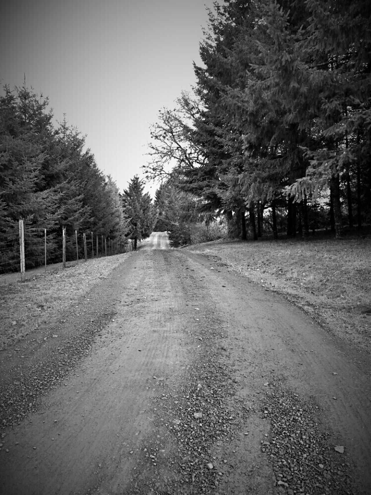 Oregon Dallas Oregon Gravel Road Black And White Going Home