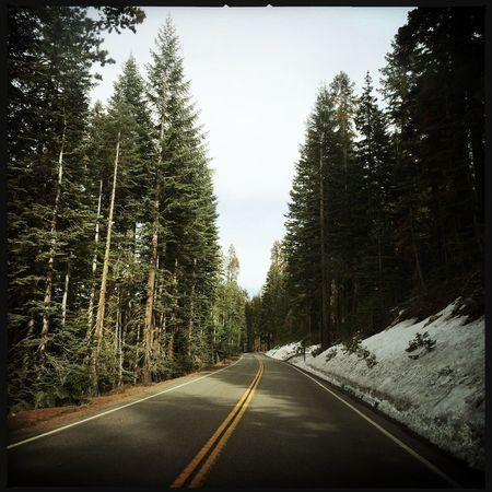 Yosemite National Park Nature Calif California