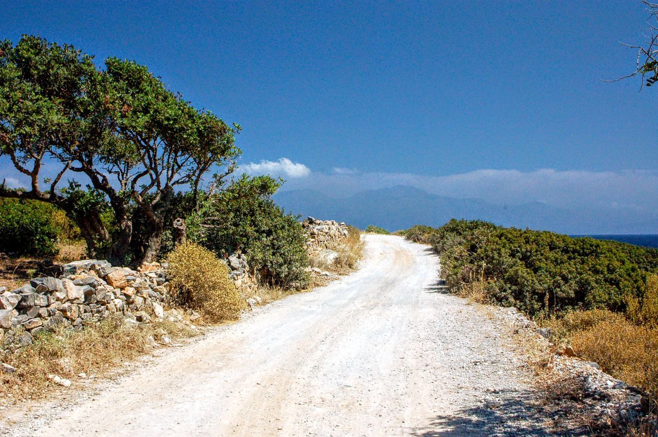 Tree The Way Forward Blue Landscape Diminishing Perspective Elounda Tranquil Scene Dirt Road Tranquility Sky Plant Non-urban Scene Vanishing Point Branch Sunny Nature Growth Empty Road Day Outdoors Nature Grassy Cloud Cloud - Sky Crete Greece
