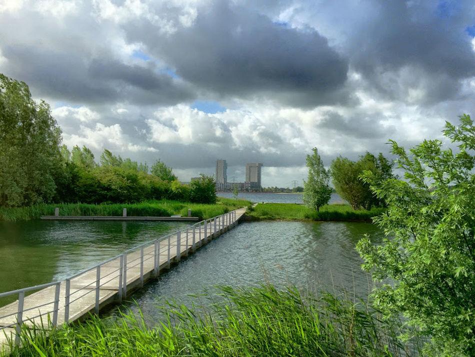 Bridge Cloud Clouds And Sky Horizon Horizon Over Water Island Lake Nature Nesselande Ponton Rotterdam Zevenhuizerplas