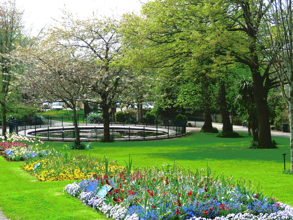 Local Park Taking Photos Warm Summer Day Colourful Bushes And Trees Colourful Flowers Yellow Blue Red Fishpond Green Lawns The Essence Of Summer
