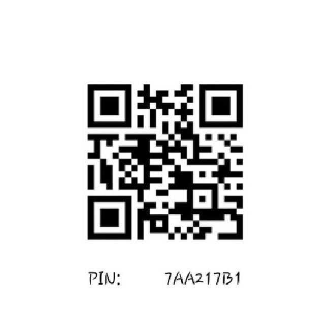 My new BBM pin.