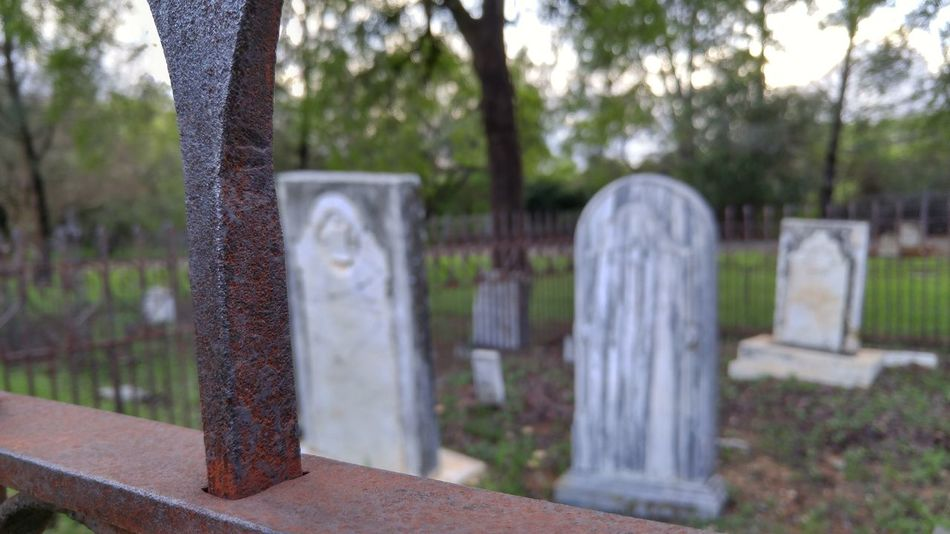 This one was actually taken by my brother. Cemetery Cemetery Photography Cemetery_shots Fence Rust Rusty Fence Gravestone Gravestones Green Nature Nature_collection Nature Photography Spanish Spanish Class Spanish Project School School Project Brother Shotonlgg4 Shotonlg4 Shotonlg