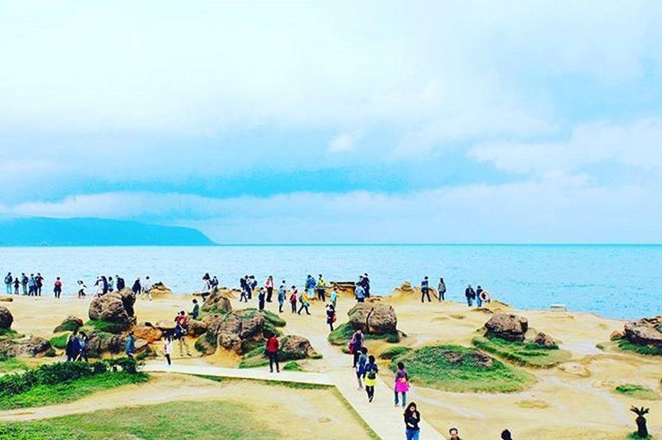 자연이 만든 자연. 대만 예류 타이완 타이페이 여행 대만여행 예류지질공원 빈카메라 Taiwan Taipei Yeliu Yeliugeopark 臺灣 野柳 Travel Landscape 빈카메라