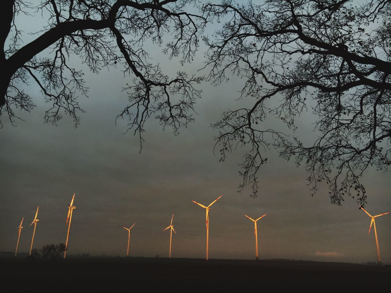Wind Power Wind Turbine Alternative Energy Renewable Energy Environmental Conservation Tree Rural Scene No People Sky Sunset