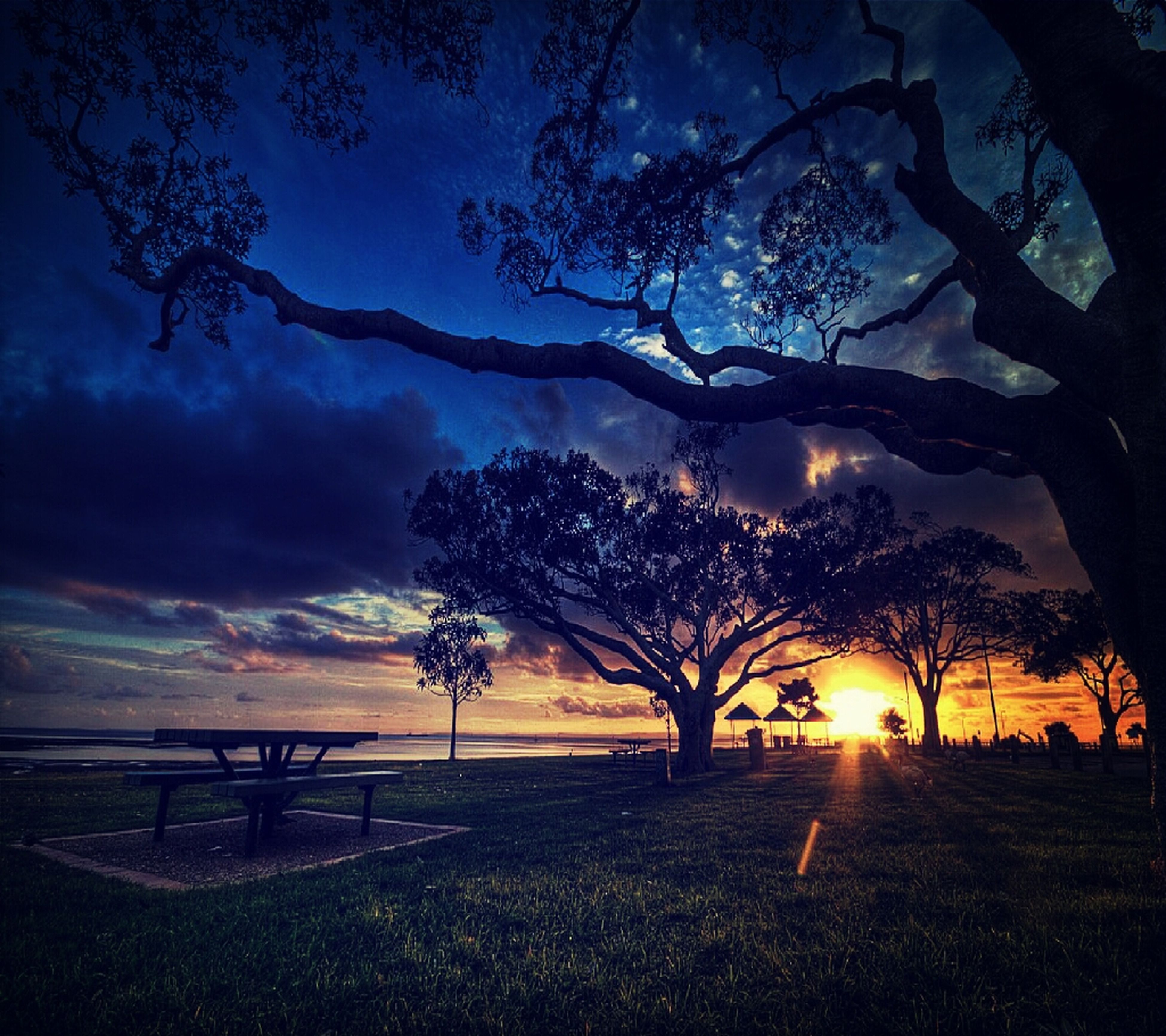 tree, sky, tranquility, sunset, tranquil scene, scenics, bare tree, silhouette, beauty in nature, cloud - sky, nature, branch, idyllic, landscape, dusk, cloudy, field, cloud, outdoors, non-urban scene