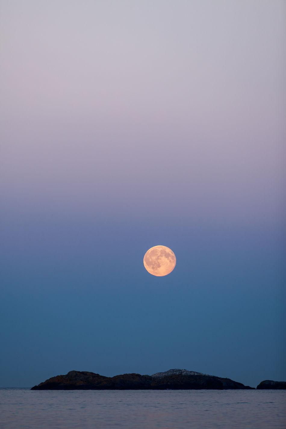 Beautiful stock photos of full moon, Beauty In Nature, Dusk, Full Moon, Moon