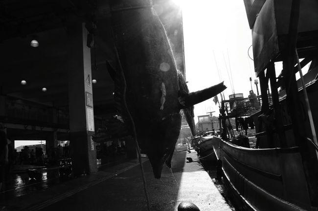Fishing Village Eye4photography  Shootermag Light And Shadow NanFangAo Yilan 宜蘭 南方澳 Taiwan
