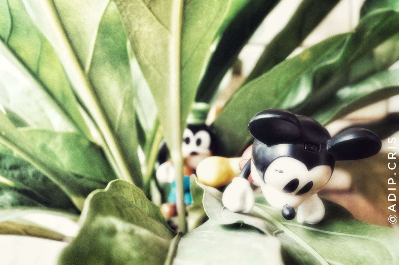 Close-up Photograph Toysphotography Toysphotogram Toys4life Toysoutdoors Effect FX Gfx Filter Photo Photos Photography Photographer Sonya58 Memory Toystory Monsterinc Mickeymouse Figurine  Photooftheday Animal Themes No People Day Outdoors