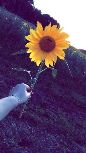 Bye bye summer👋🏻🙈 Summer HelloautumnColdweatherWarmdrinksnHoddietime😍e😍