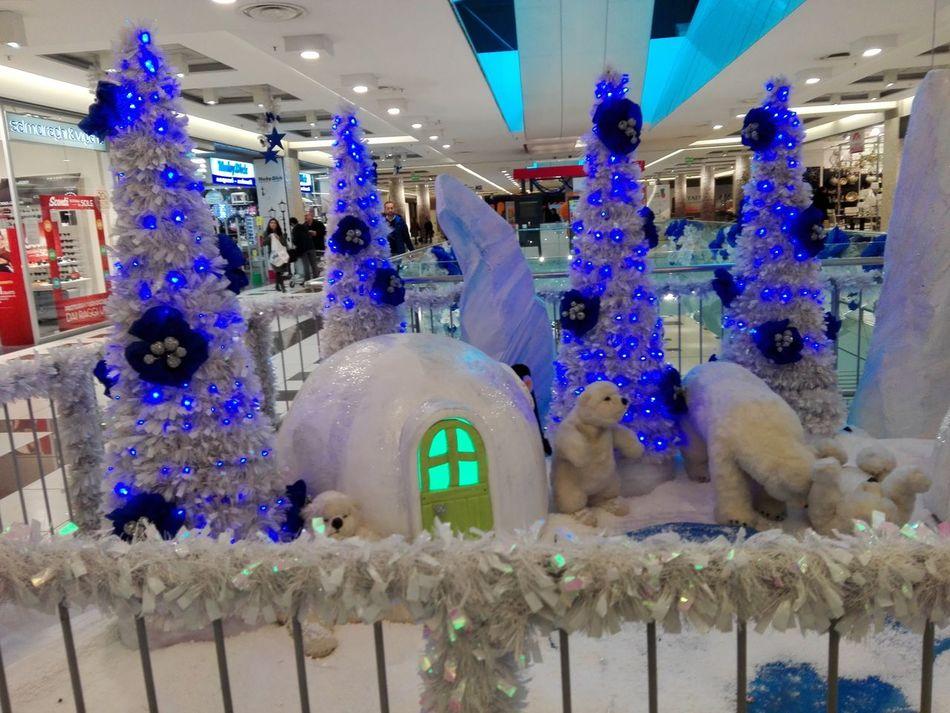 Christmas Blue New Year's Eve Christmas Lights Christmas Decoration Night Christmas Tree Ice Crystal Presepe All'aperto Illuminated Center City Centercommercity Centerpoint Centerville
