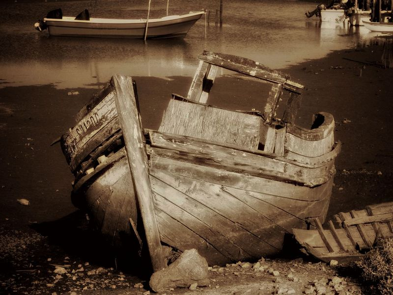 Abandoned Bad Condition Boat Damaged Day Deterioration Discard In Front Of Low Tide Mode Of Transport Monochrome Photography Moored Nautical Vessel No People Obsolete Old Outdoors Run-down Shipwreck Shore Tranquility Transportation Weathered Wood Wood - Material