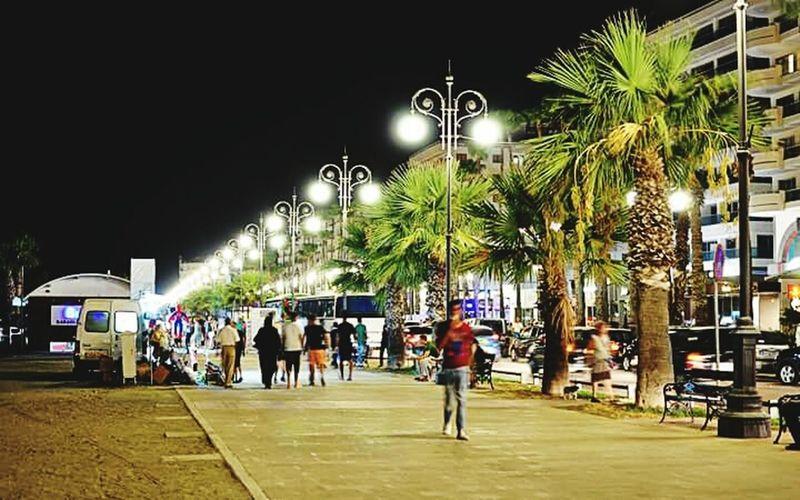 Larnaka Larnaca Beach Finicoudes Cyprus Love Cyprus Nightphotography Night Lights Nikonphotography Cityscape View Night Views Illuminated Street Tree Road Palm Tree Lifestyles Outdoors Sightseeing Travel Photography Like4like Like4follow Travel Larnaca, Cyprus Beautiful ♥