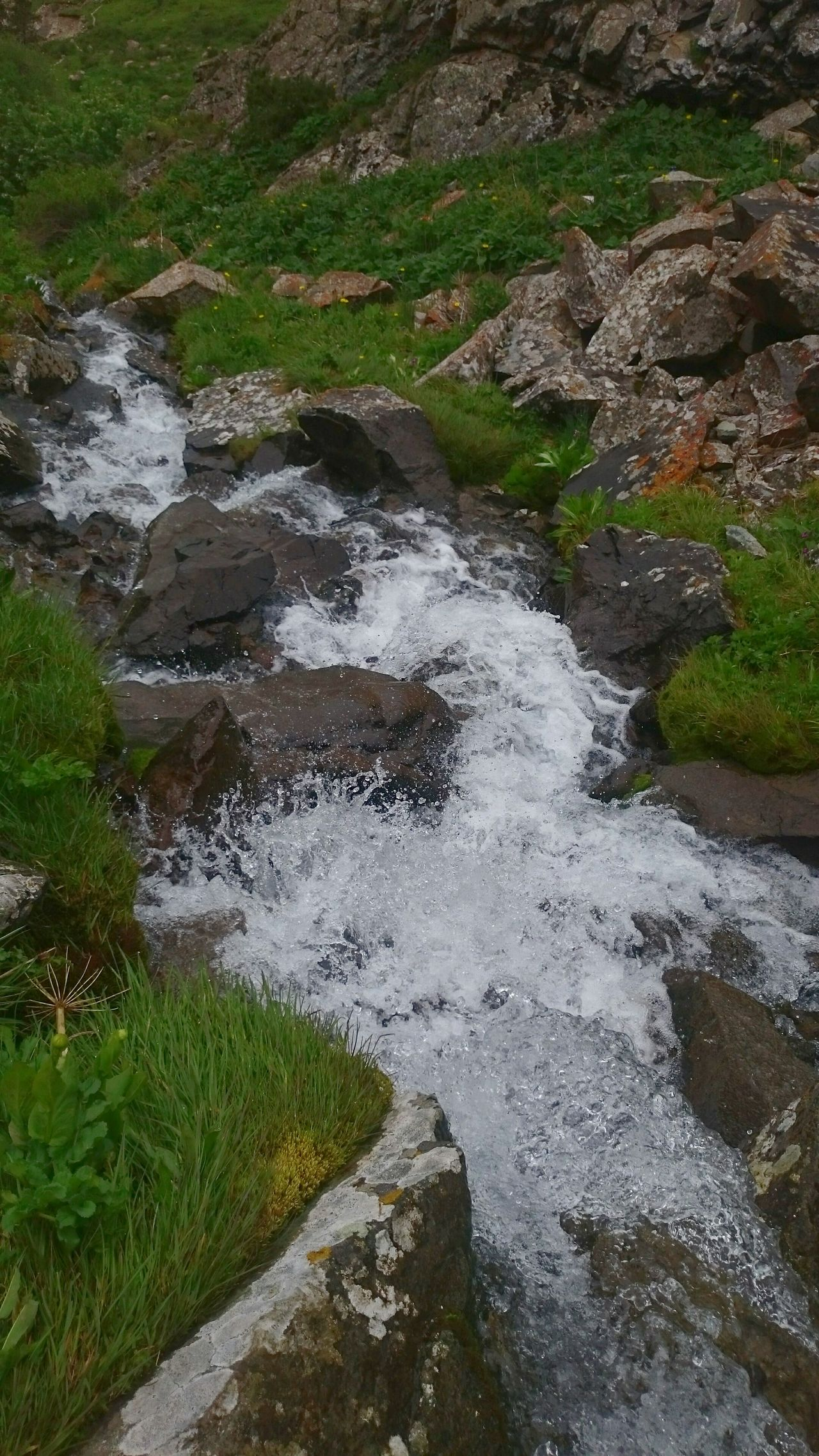 Nature Water Motion Beauty In Nature Grass Tranquility Stream - Flowing Water Scenics Crystal Clear Crystal Clear Waters River Waterfall Kyrgyzstan Nature_collection Zen Tranquility Grass Hiking Traveling Hikingadventures Travel Destinations Mountain_collection Mountain View Green Stone