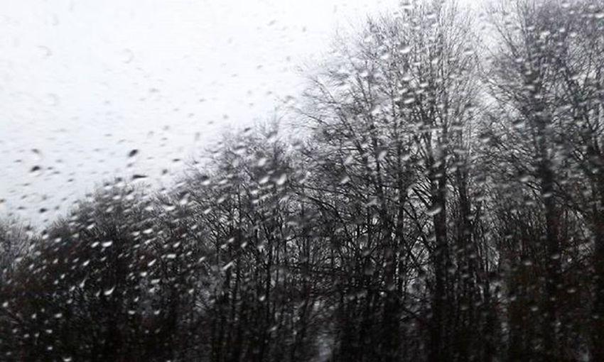 .. si rincorrono, come stelle cadenti.. 😚 Drops Rain Raindrops Raining RainyDay Water Instarain Gocce Pioggia Cielo Plumbeo Rainweather My_daily_capture Bianconero Blackandwhite Bw Black White Minimal Amazing Grey Splash Tree Mountain vallebrembana bergamo italy instagram