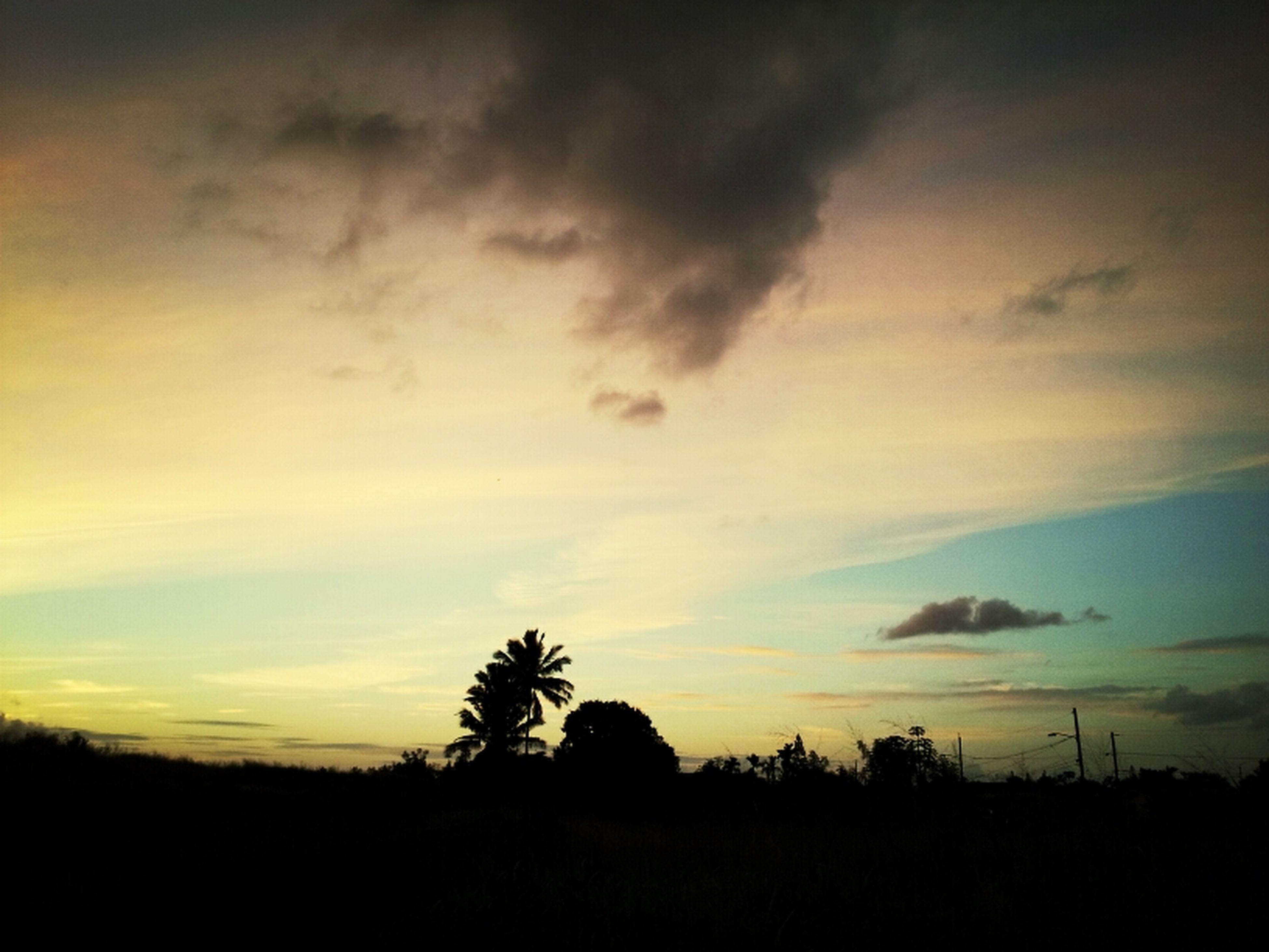 silhouette, sunset, tranquil scene, tranquility, sky, scenics, landscape, beauty in nature, nature, tree, field, idyllic, cloud - sky, dark, cloud, outdoors, dusk, non-urban scene, outline, orange color