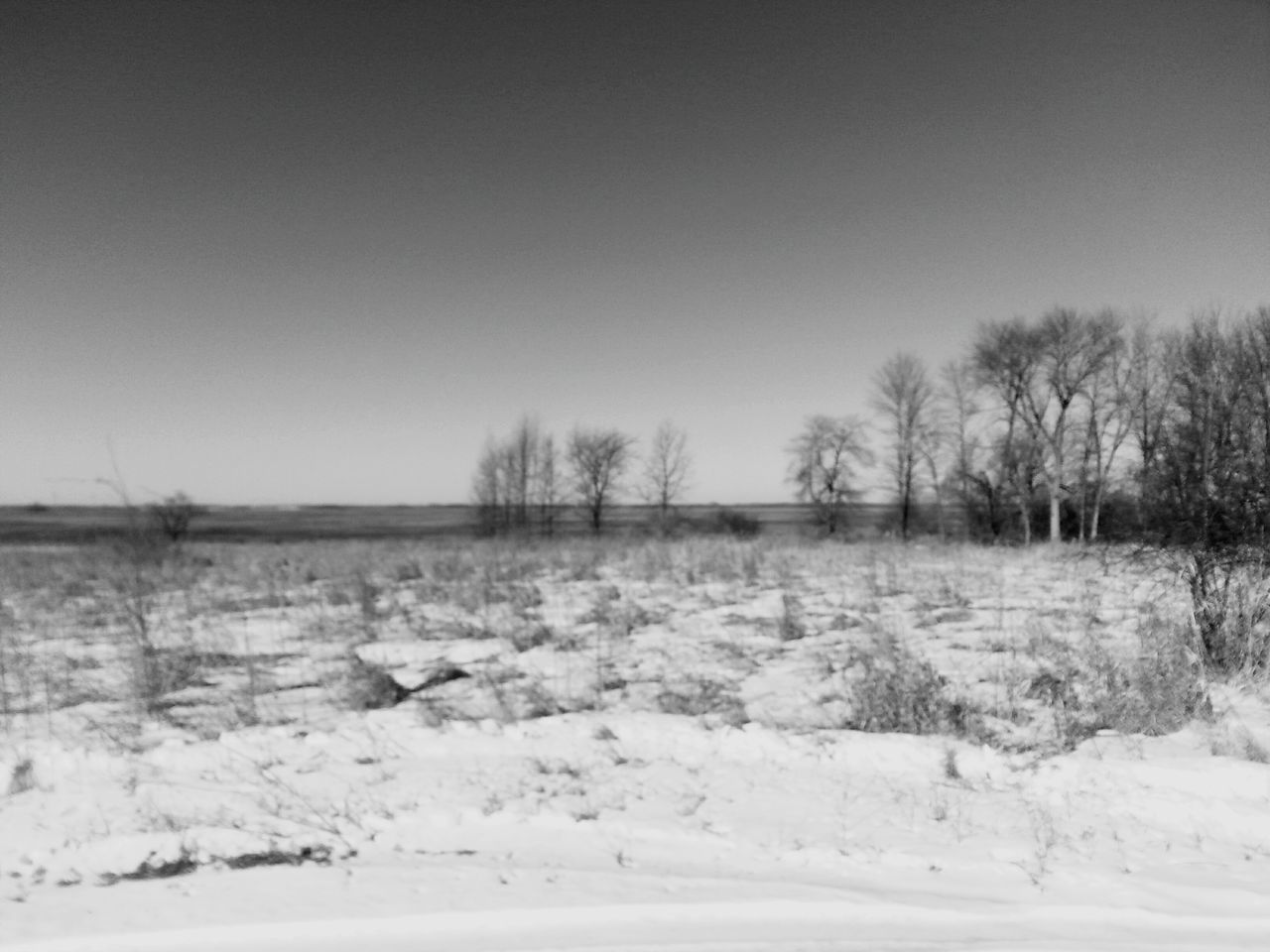 cold temperature, winter, snow, nature, landscape, tranquility, tranquil scene, clear sky, field, scenics, outdoors, tree, beauty in nature, no people, cold, frozen, bare tree, day, sky