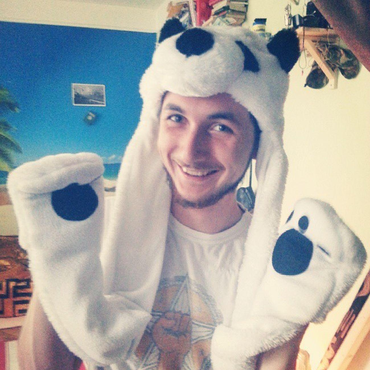 носуля панда