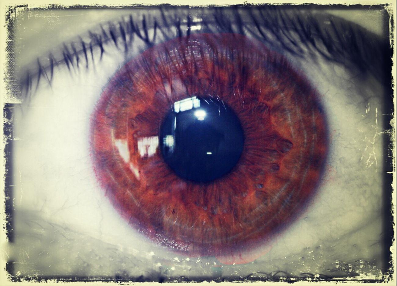 Eye Am ...