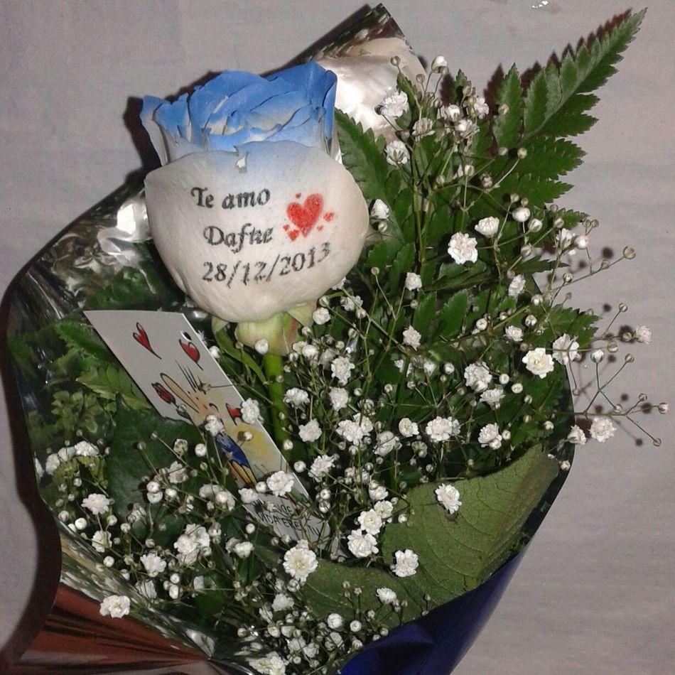 Preciosa rosa natural con los filos en azul y con el petalo tatuado con un mensaje de amor. Rosas Regalo Especial Aniversario Rosa Azul Aniversarios Regalo De Aniversario Flores A Domicilio Rosas Azules