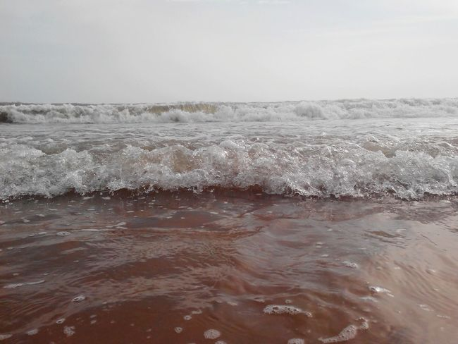 Beach Kerala The Gods Own Country ;) Little Waves Trying Out Something New. Seaside