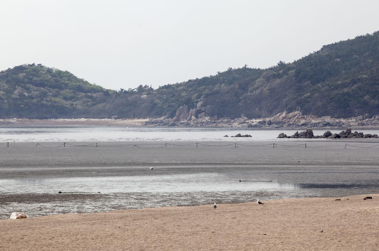 Beautiful stock photos of south korea, Beach, Calm, Clear Sky, Coastline