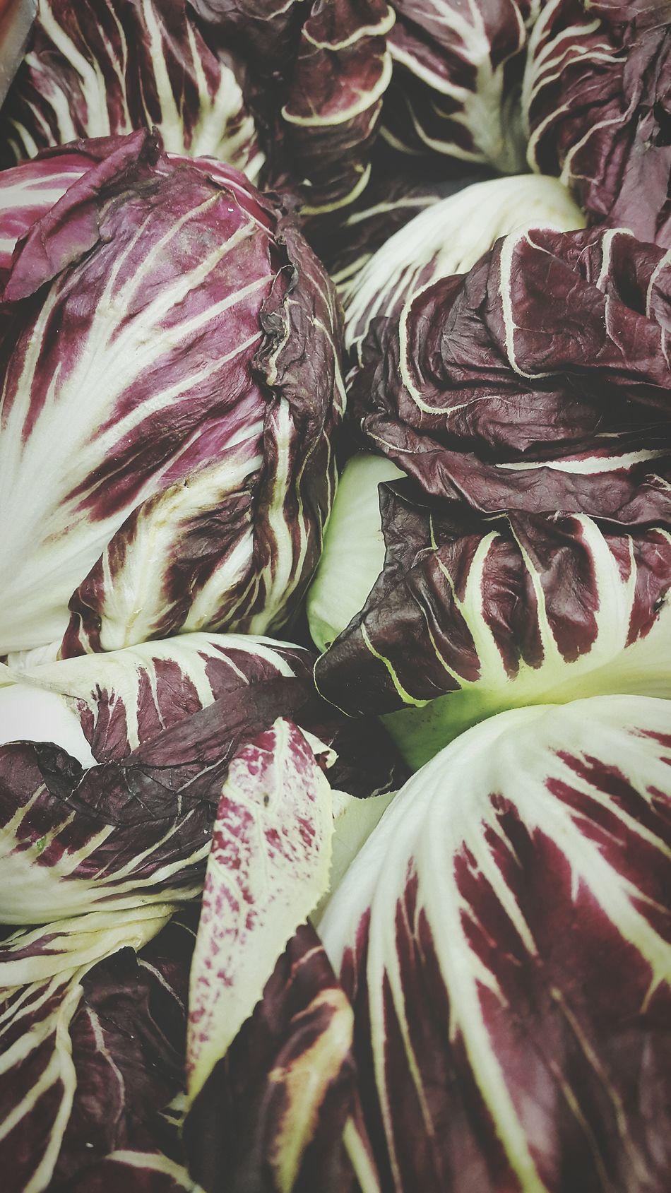 Brown Letuce Letuce Lechuga Lechugas Background Texture Nature Fresh Vegetables Backgrounds Vegetarian Food Vegetables Food Many Of A Kind Freshness