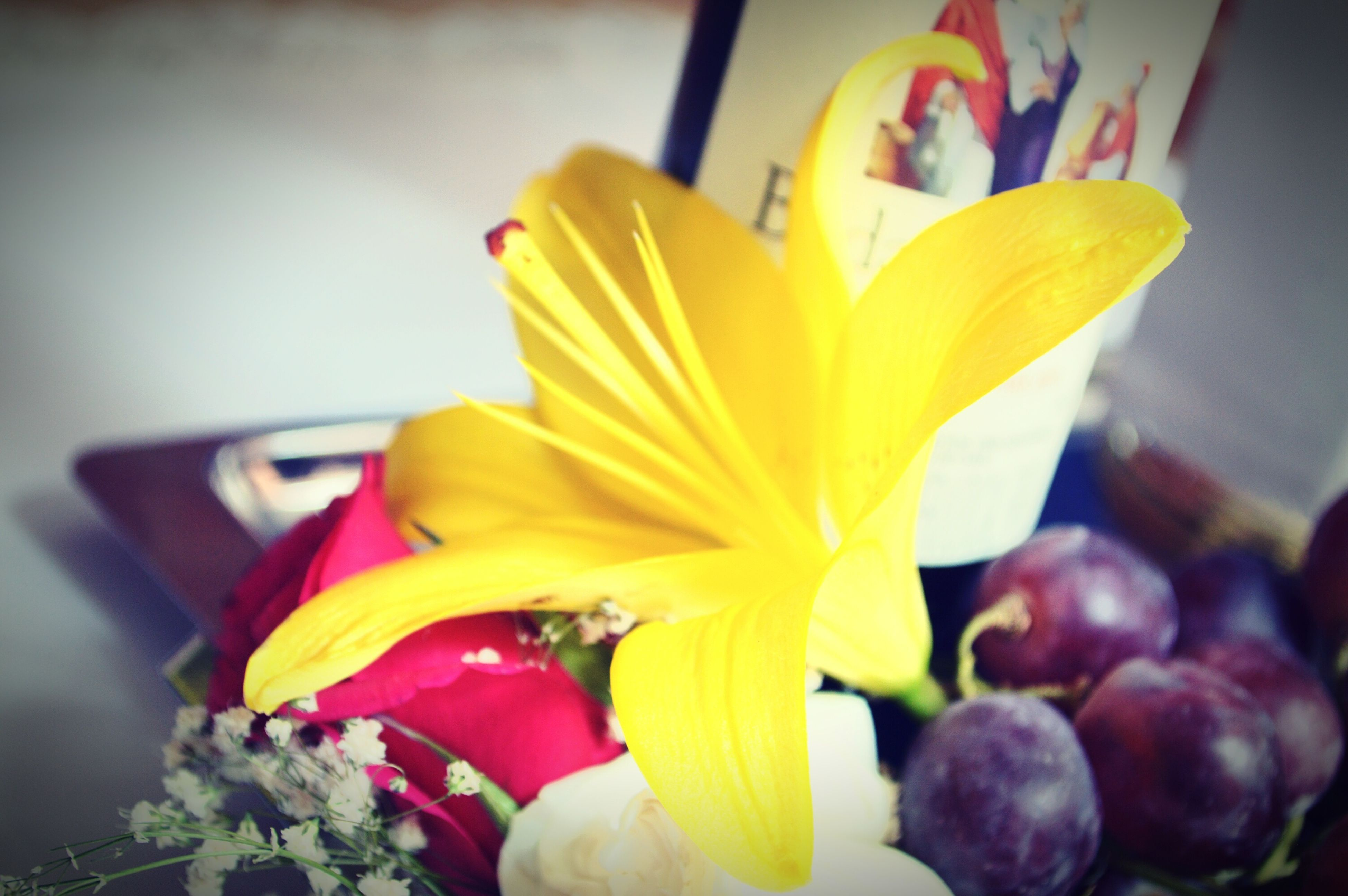 flower, petal, flower head, freshness, fragility, yellow, close-up, indoors, beauty in nature, blooming, growth, plant, pollen, nature, single flower, focus on foreground, in bloom, vase, auto post production filter, home interior