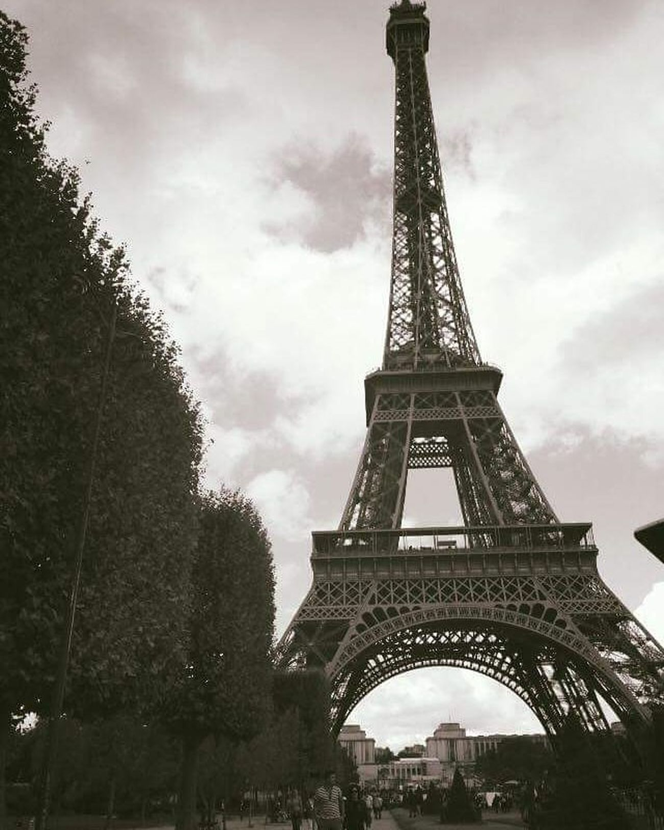 Likeit Loveit Goood Paris Eiffeltower Bushes Astonishing Lushview Beautiful Blackandwhite Astonishingview Breathtaking Photographie  Stole