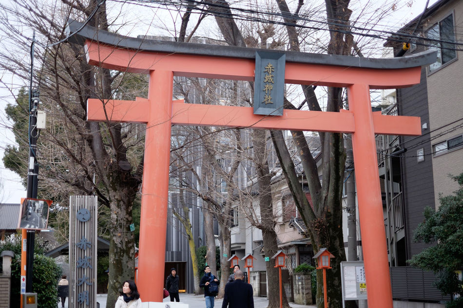 神楽坂、赤城神社 Fujifilm Fujifilm X-E2 Fujifilm_xseries Japan Japan Photography Kagurazaka Shrine Tokyo 日本 東京 神楽坂 赤城神社 鳥居