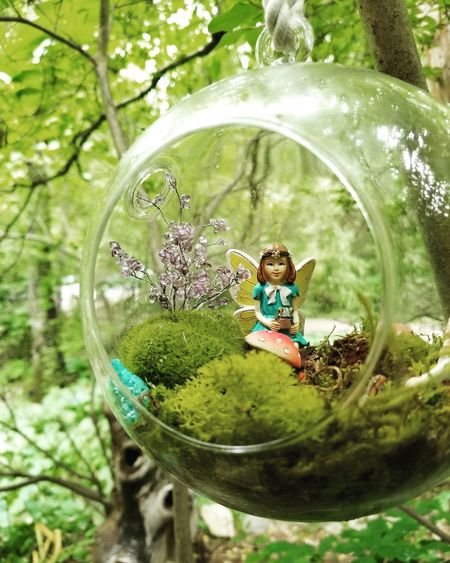 Tree Green Color Day Nature No People Outdoors Close-up Bubble Wand Fairy Fairy Garden Globe Magic Beauty In Nature Love Peace Tree Nature Summer Fragility Flower